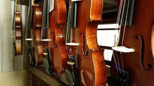 Rockley Family Foundation | Violins